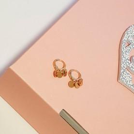 Earrings Cercles Gold